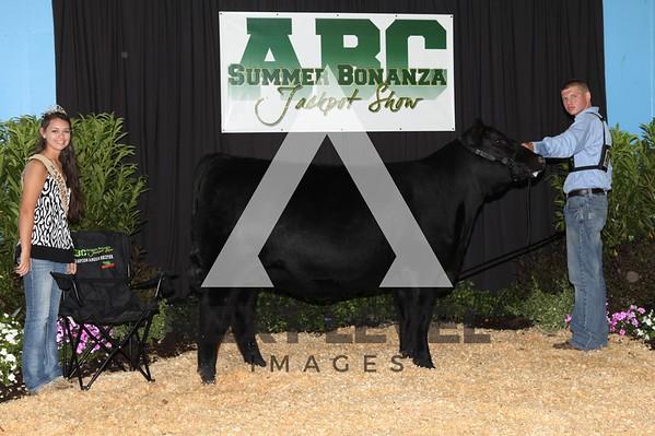 ABC Jackpot 2012 Backdrop