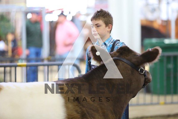 2014 Big East Jackpot Steer Ring Shots