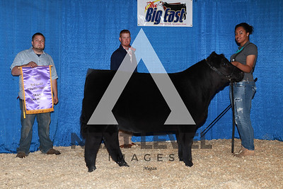 Ch_Youth_Steer_MA12_2_ 1315