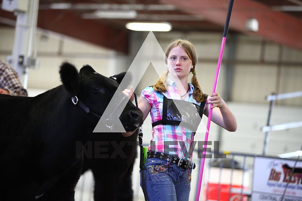 Big East 2013 Jackpot Steer Ring Shots