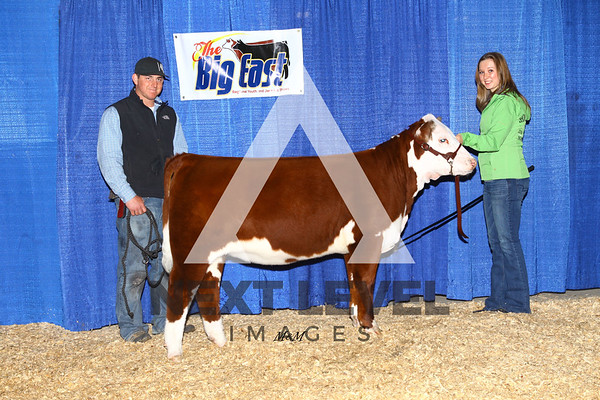 Big East 2014 Heifer Jackpot Backdrop
