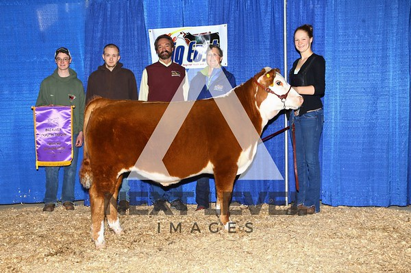 Big East 2014  Youth Steer Backdrop