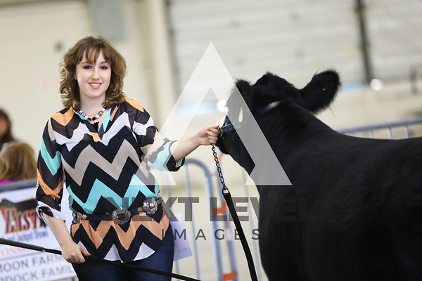 Big East 2015 Jackpot Steer Ring Shots