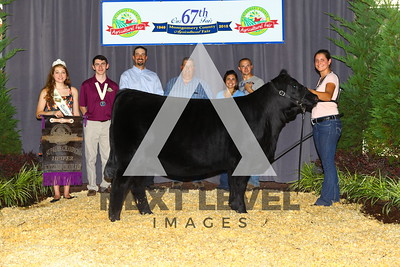 Supreme_Female_Ch_Angus_Heifer_Shelby_Stabler_IMG_9539