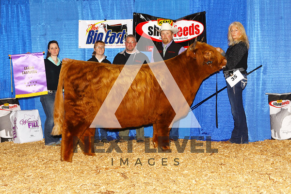 NE Highland Show 2016 Backdrop