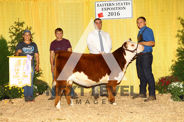 2016 Junior Hereford Backdrop