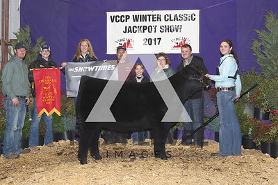 4th_Overall_Heifer_A33A8377