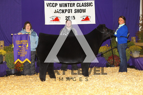 VCCP 2015 Steer Backdrop