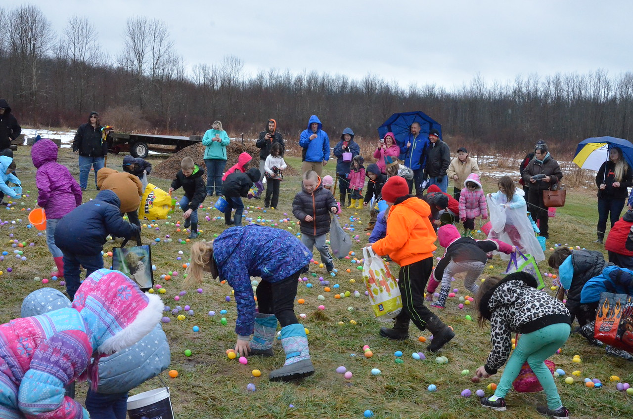 Leah McDonald - Oneida Daily Dispatch Children take part in the 43rd annual Easter Egg Hunt at the Great Swamp Conservancy in Canastota on Friday, March 30, 2018.