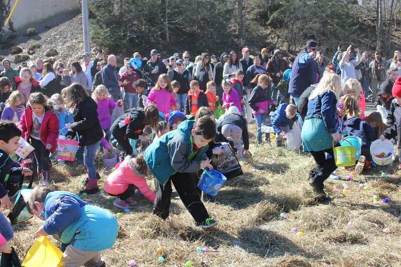 Charles Pritchard - Oneida Daily Dispatch Children of all ages hurry to gather as many eggs as they can find at the town of Lenox Easter Egg Hunt on Saturday, March 31, 2018.