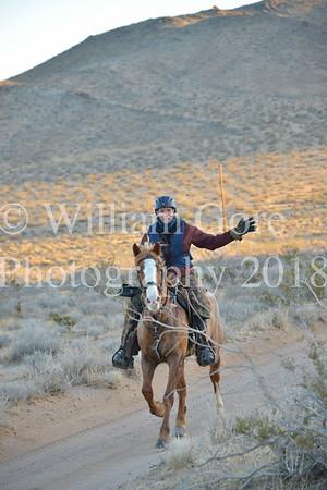 20 Mule Team ~ Rene Baylor