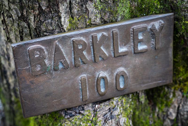 HStern_Barkley-00084