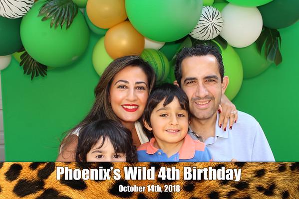 Phoenix's Wild 4th Birthday Party