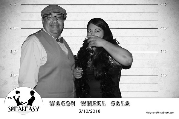 Wagon Wheel Speakeasy Gala 2018 - 3/10/2018
