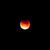 2018_01_31 Blue Blood Moon in Exeter.30