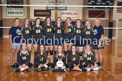 WHS JV Volleyball Team Photo