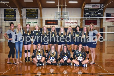 WHS Varsity Volleyball Team Photo