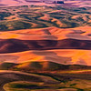 Farming in Color