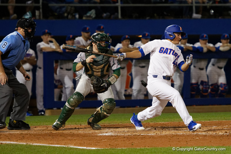 University of Florida Gators Baseball Siena