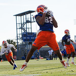 University of Florida Gators tight end Moral Stephens making a catch as the Gators run drills during the first day 2018 spring practices at Sanders Field at the Universitu of Florida.  March 16th, 2018.  Gator Country photo by David Bowie.