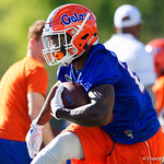 University of Florida Gators running back Dameon Pierceas the Gators run drills during the first day 2018 spring practices at Sanders Field at the Universitu of Florida.  March 16th, 2018.  Gator Country photo by David Bowie.