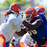Florida Gators offensive lineman J. Ullance blocking University of Florida Gators defensive lineman Jachai Polite as the Gators run drills during the second day of 2018 spring practices at Sanders Field at the University of Florida.  March 17th, 2018.  Gator Country photo by David Bowie.