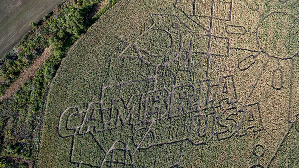 181008 Corn Maze 2
