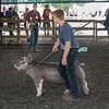 180801 County Fair 1
