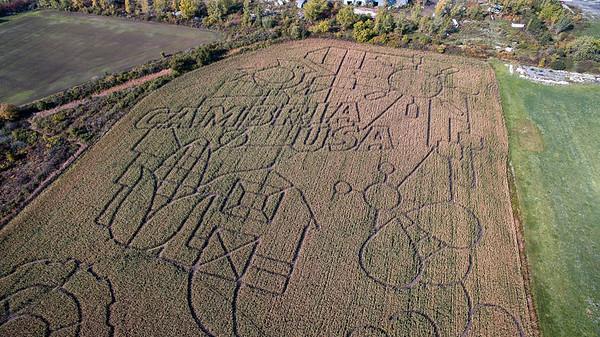 181008 Corn Maze 1