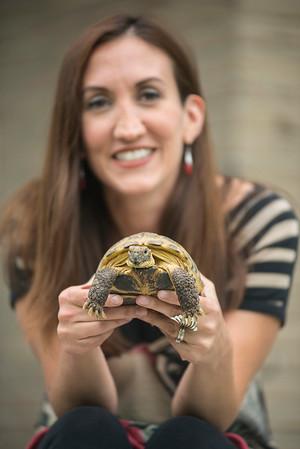 180920 Turtle 1