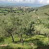 Above Spello