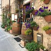 Drinking Wine, wine bar, Spello
