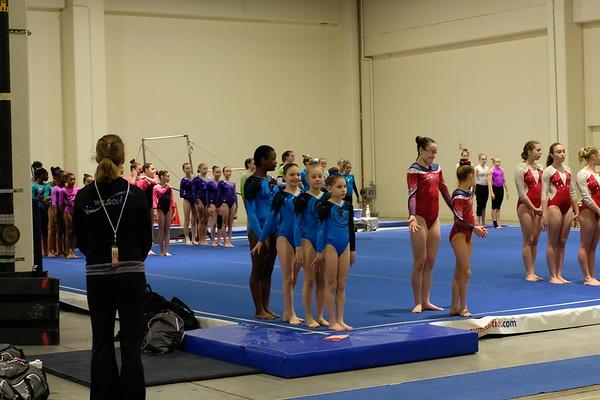 2018 Gymnastics Photos