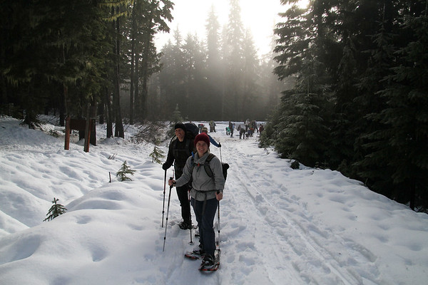 2018-01-13 Snowshoeing on White Pass, Forest Road 1284