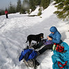 Snowshoeing on White Pass<br /> Forest Road 1284