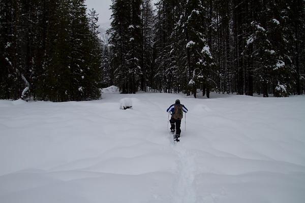 2018-01-27 Snowshoeing on Chinook Pass, Bumping Lake