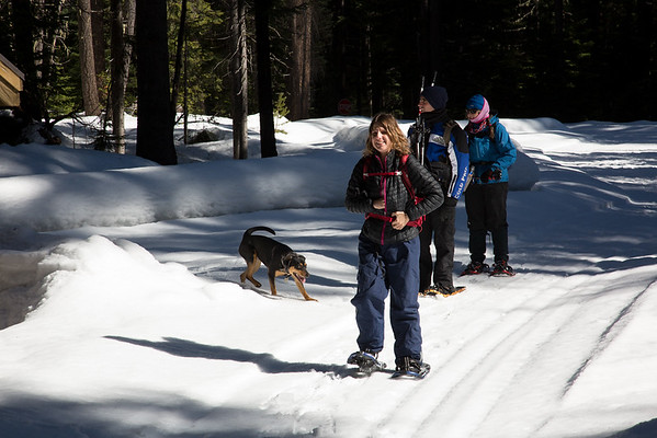 2018-03-11 Snowshoeing on Chinook Pass, Pleasant Valley Campground