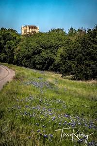 Falkenstein Castle-0420