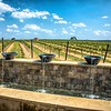 Grape Creek Winery-0210