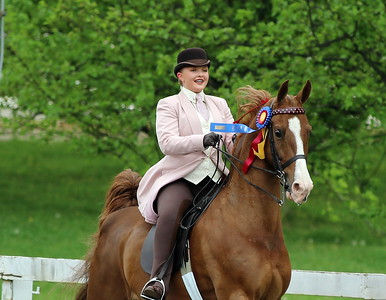 2018 Horse Show Season