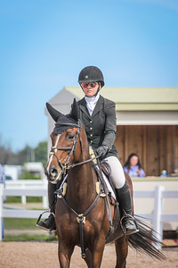 2018 Horse Shows