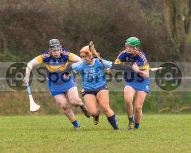 20180218005 – All Ireland Intermediate Camogie League Tipperary v Dublin
