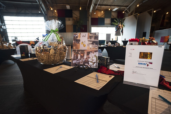 Fizli_Photo_Sacred_Heart_Bursary_Auction_810_0072
