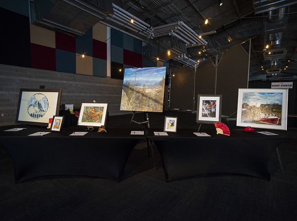 Fizli_Photo_Sacred_Heart_Bursary_Auction_810_0074