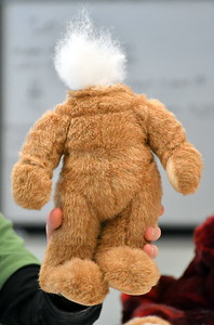 RSR_3244 headless teddy