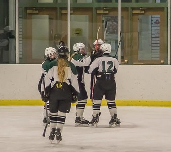 The Wasps celebrate a goal in last week's shutout win for girls' hockey