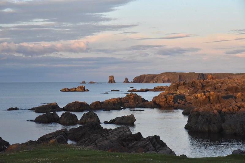 Newfoundland Six