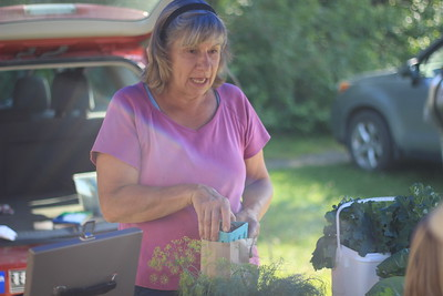 Carol Stedman of Clay Hill Corners Farm puts berries in a bag for a customer
