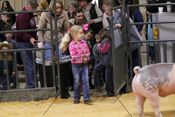 Little Britches Showmanship