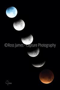 LunarEclipse_1 31 18_wm